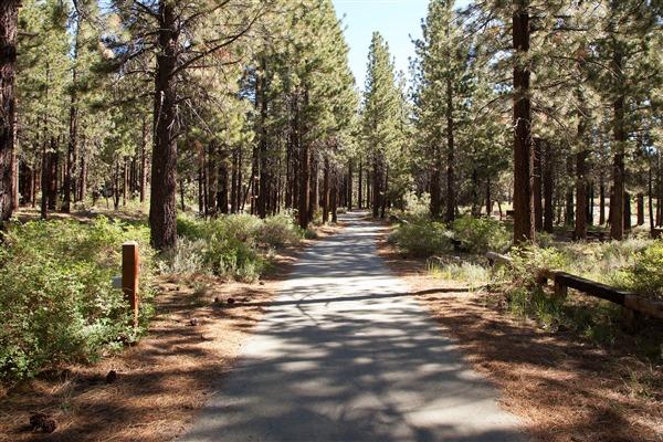 Shady Rest Path 0.8 mi