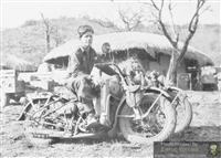 Classic Harley Davidson Models