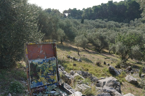 Olive orchard 11x12 2019     DSC08792