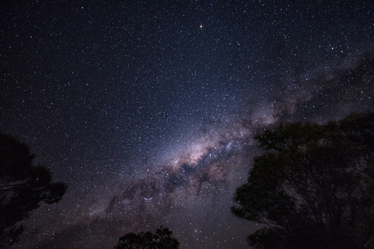 Australian Age of Dinosaurs | The Dark Sky