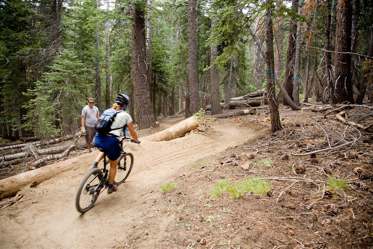 mammoth lakes trail system | mountain biking